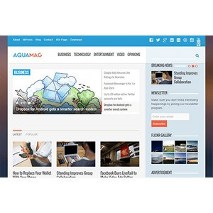 jasa-pembuatan-website-berita-news-jakarta-aquamag-desktop-themejunkie