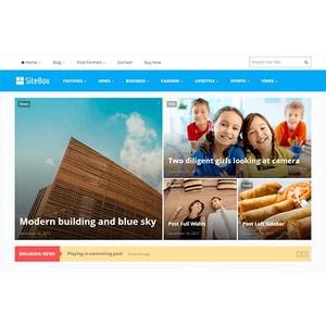 jasa-pembuatan-website-berita-news-jakarta-sitebox-desktop-themejunkie