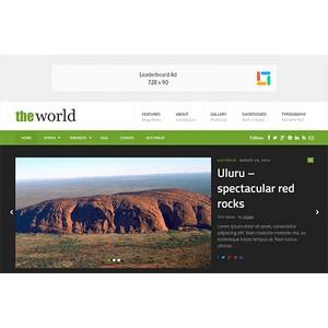 jasa-pembuatan-website-berita-news-jakarta-theworld-desktop-themejunkie