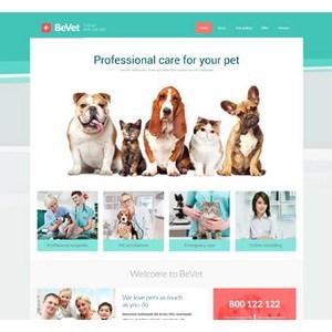 jasa-pembuatan-website-bisnis-perusahaan-di-jakarta-splash_home_vet