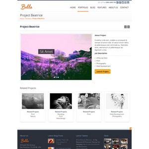 jasa-pembuatan-website-blog-personal-pribadi-jakarta-Belle-theme