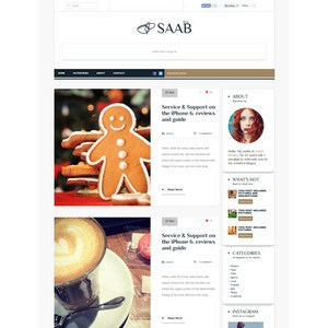 jasa-pembuatan-website-blog-personal-pribadi-jakarta-Saab-wp-theme