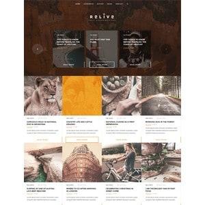 jasa-pembuatan-website-blog-personal-pribadi-jakarta-relive-340x443_005