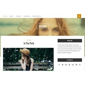 jasa-pembuatan-website-bulan-themejunkie
