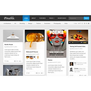 jasa-pembuatan-website-portofolio-jakarta-pinable-desktop-themejunkie