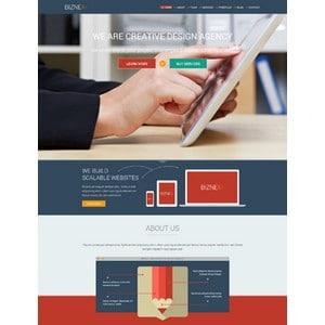 jasa-pembuatan-website-potfolio-portofolio-jakarta-BizNex-theme