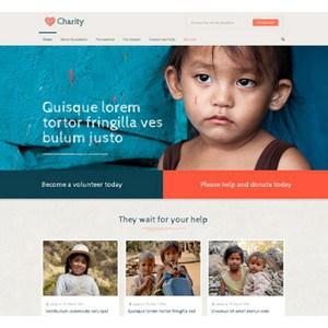 jasa-pembuatan-website-bisnis-perusahaan-di-jakarta-splash_home_charity2