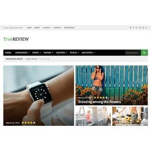 jasa-pembuatan-website-berita-news-jakarta-truereview-desktop-themejunkie