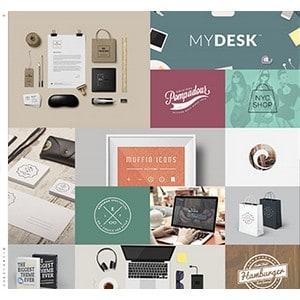 jasa-pembuatan-website-bisnis-perusahaan-di-jakarta-splash_home_design