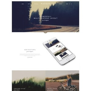 jasa-pembuatan-website-blog-personal-pribadi-jakarta-narcos-340x443