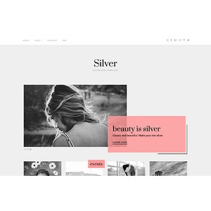 jasa-pembuatan-website-silver-themejunkie