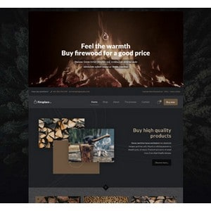 jasa-pembuatan-website-bisnis-perusahaan-di-jakarta-splash_home_fireplace