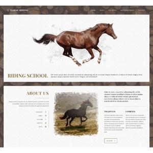 jasa-pembuatan-website-bisnis-perusahaan-di-jakarta-splash_home_horse