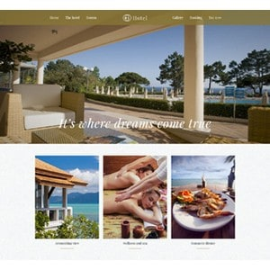 jasa-pembuatan-website-bisnis-perusahaan-di-jakarta-splash_home_hotel2